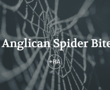 An Anglican Spider Bite: My Journey into the Anglican Way