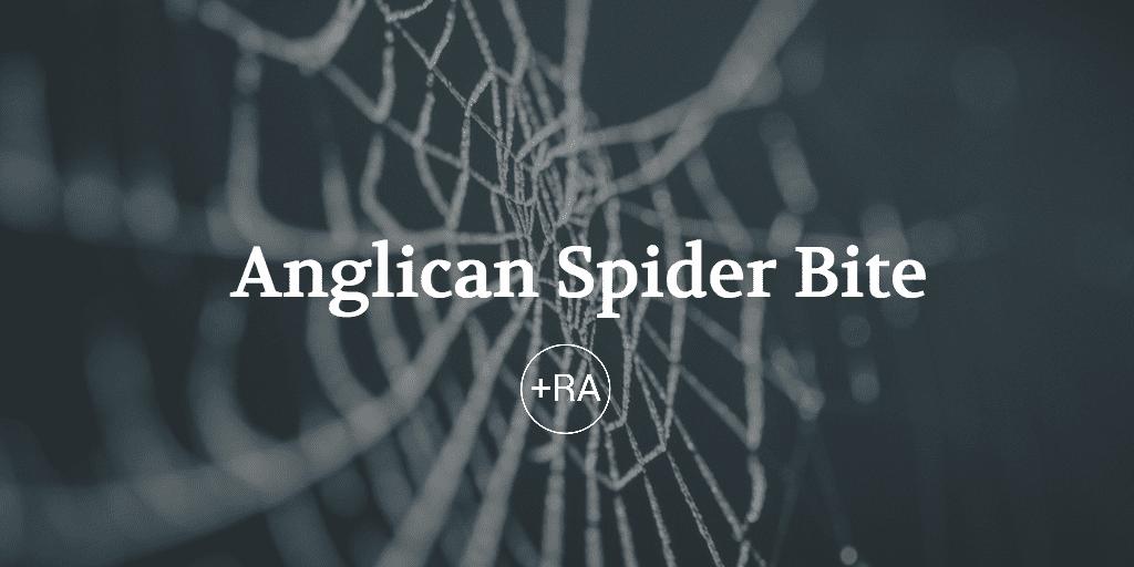 Anglican Spider Bite