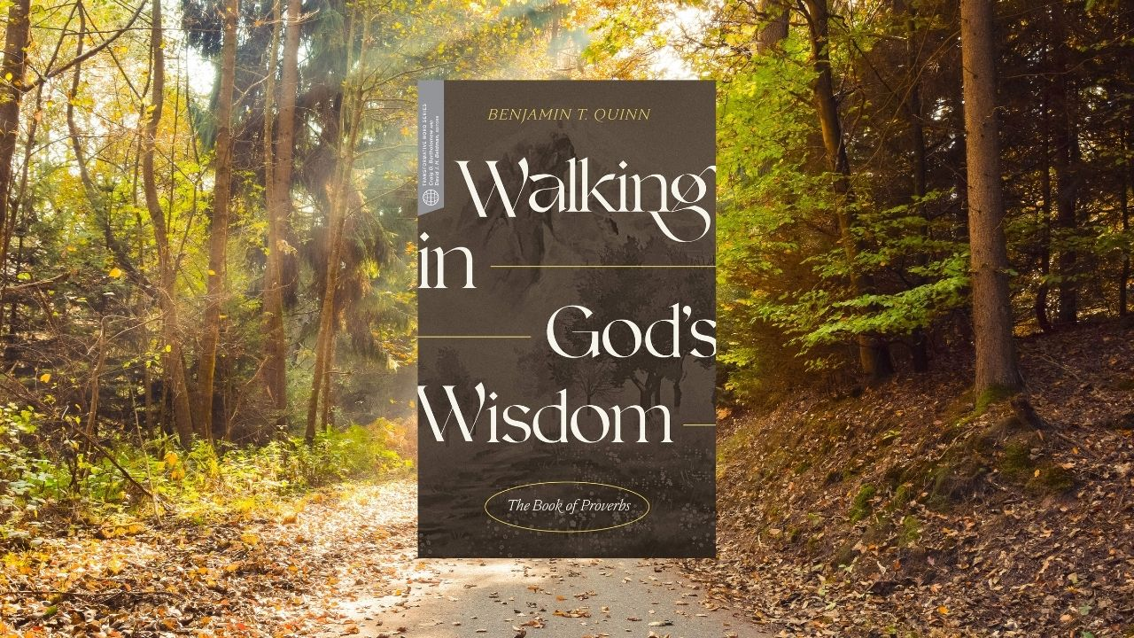 Walking in God's Wisdom: The Book of Proverbs by Quinn (Review)